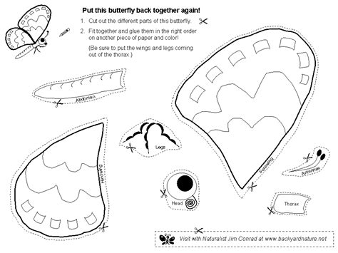 can you pattern turkeys free coloring pages of turkey cut and paste