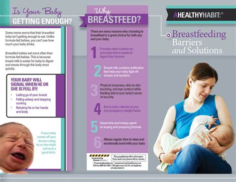 breastfeeding brochure templates barriers and solutions tri fold brochures