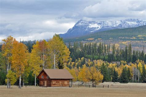 Cabin Mountains by Autumn Mountain Cabin In Glacier Park By Bruce Gourley