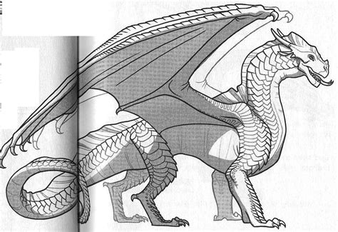 seawing dragon coloring page free coloring pages of seawing dragon