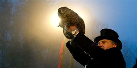 groundhog day ending climate change may end world s predicting groundhog
