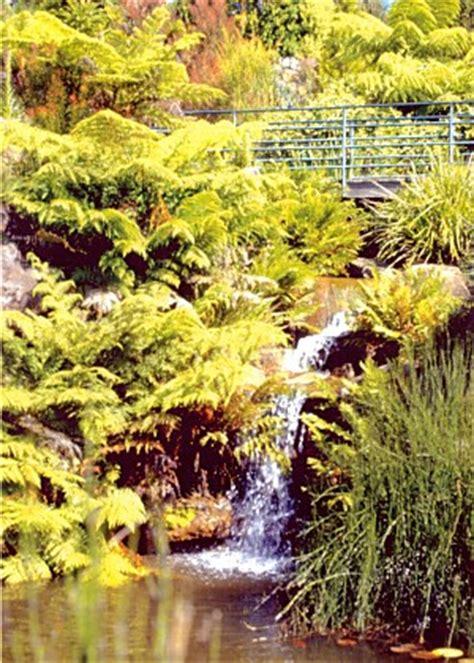 Greater Lithgow Mount Tomah Botanical Gardens Mt Tomah Botanic Garden