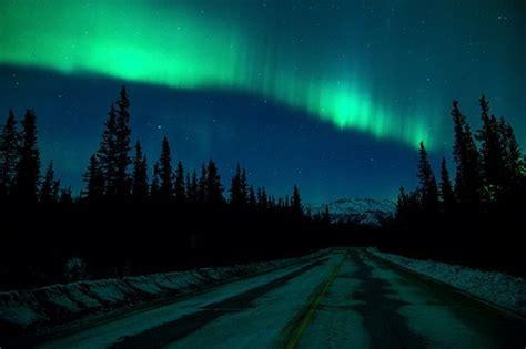 denali national park northern lights denali national park