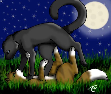 Leafpool and Crowfeather by Raindrop1998 on DeviantArt Leafpool And Crowfeather Mating