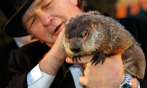 groundhog day news welcome to the style groundhog day again world