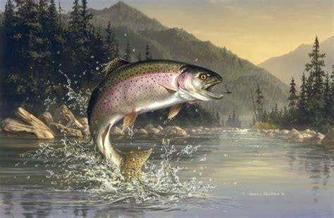 big bear lake trout fishing spots big bear blogs