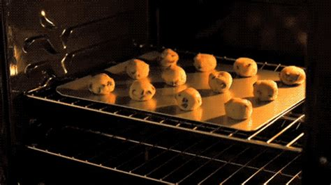 baking gif baking gif tumblr