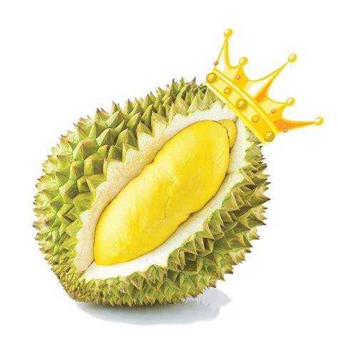 orta durian