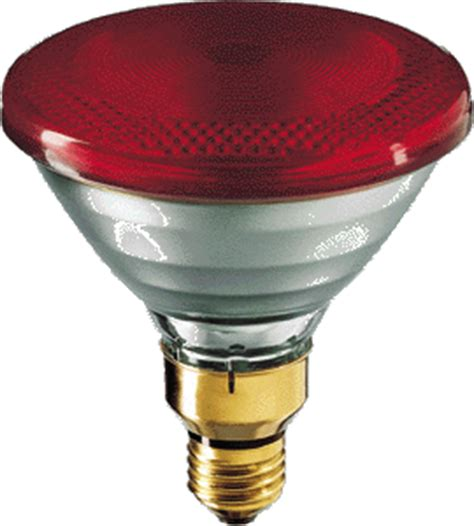 100 watt 240 volt par38 philips red infrared light bulb