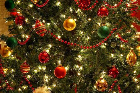 christmas christmas tree decoration gold green image