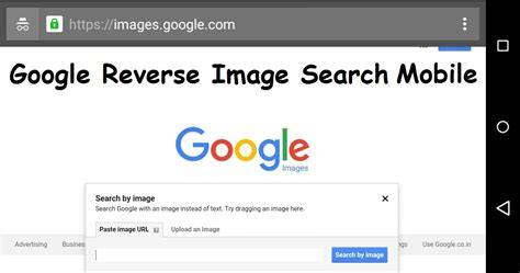 On Search How To Image Search On Mobile Phone