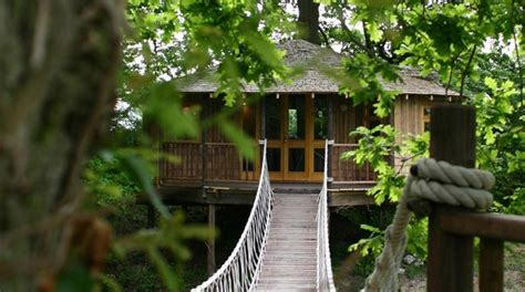 treehouse honeymoon 5 beautiful tree house resorts in kerala for stunning