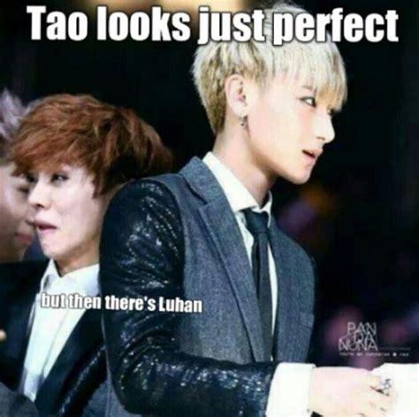 Tao Meme - 140 best exo funny images on pinterest exo memes funny