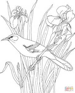 printable coloring pages birds and flowers mockingbird and iris tennessee state bird and flower