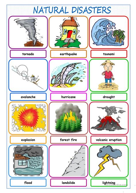 natural disasters picture dictionary worksheet free esl
