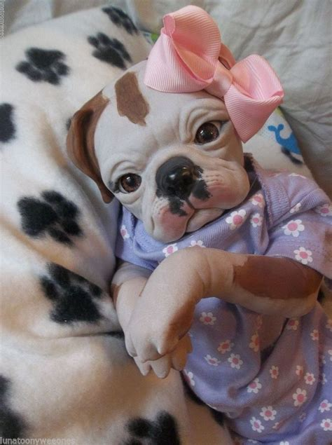 puppy doll 21 best images about reborn puppies on reborn dolls puppies and reborn babies