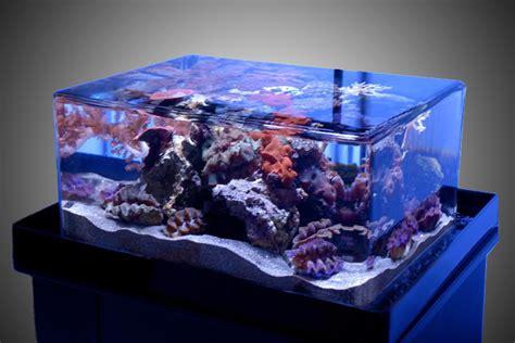 Edge Tank zeroedge 22zr aquarium systemcustom aquariums fish tanks