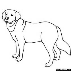 golden retriever coloring pages golden retriever coloring page