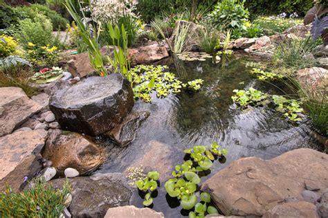 natural backyard pond natural pond traditional portland by paradise