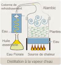 diagramme de fabrication de jus d orange pdf expert des huiles essentielles biologiques