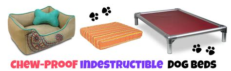 Chew Resistant Beds by The Best Indestructible Chew Proof Beds Tough Beds
