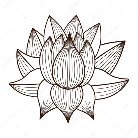 drawing of lotus flower lotus flower drawing isolated icon design stock vector