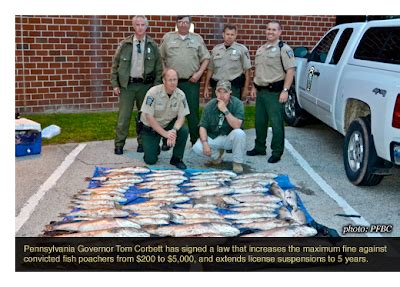 pa fish and boat commission authority full o bull gazette fines and prison sentences increased
