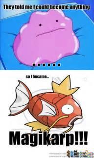 Magikarp Meme - magikarp memes google search pokemon pinterest