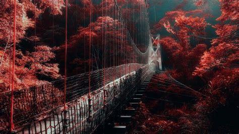 bridge  red autumn trees hd dark aesthetic