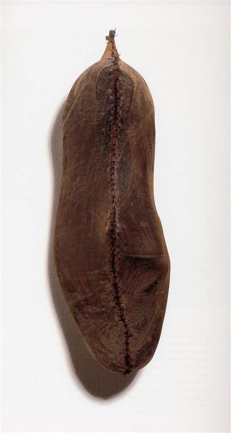 Bibit Benih Seeds Lunaria Biennis Money Plant Unique 79 best nut pod seed images on seed pods seeds and botany