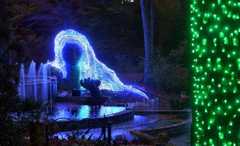 Lights Atlanta Botanical Gardens Atlanta Botanical Garden Garden Lights Hours Prices And Info