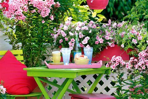 welche pflanzen für balkon dekor pflanzen balkon