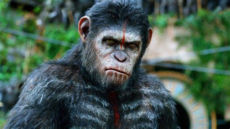 awn of the planet of the apes reinventing the reel dawn of the planet of the apes the