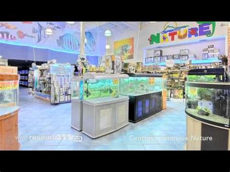 nature pet centres cat dog bird food aquariums youtube