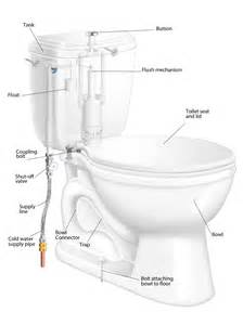 how to remove and replace a toilet how tos diy