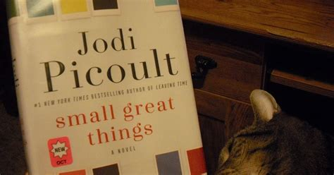 libro small great things grab a book from our stack quot small great things quot by jodi picoult is thought provoking a must