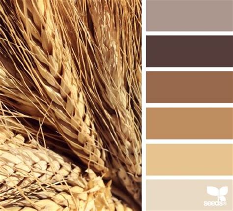 wheat tones paint colors design and paint palettes