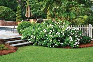 low maintenance landscaping tips atlanta home improvement