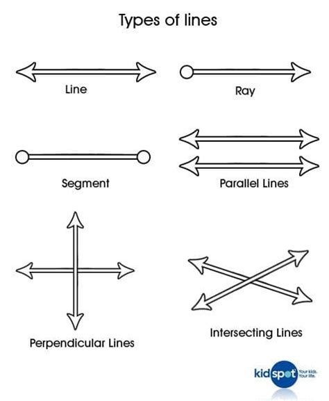 Maths for kids: Mathematical lines - Kidspot Line Geometry Example