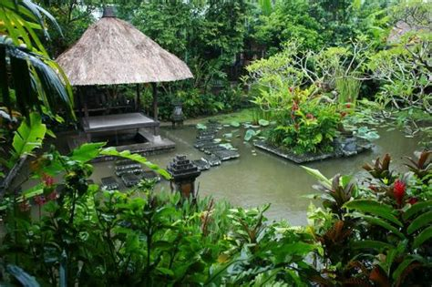 Ananda Cottages Bali by Lush Duck Pond View From Restaurant Picture Of Ananda