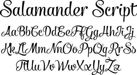 cursive fonts letters in cursive script fonts salamander script font by fenotype font