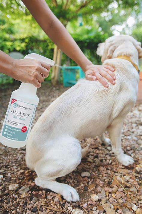 repellent for lawn pet parent pack as seen on shark tank