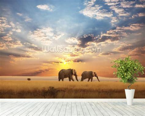 Elephant Wall Murals elephant wall mural amp elephant wallpaper wallsauce