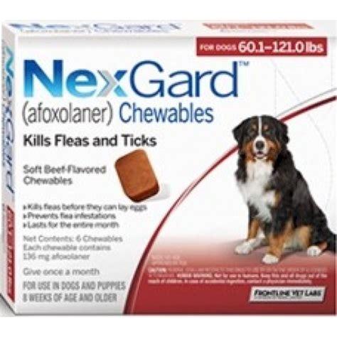 nexgard for dogs 60 120 lbs nexgard for dogs 60 120 lbs 6 tablets petragemsdog
