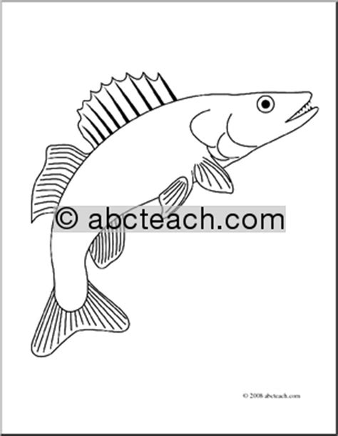 walleye fish coloring page sketch coloring page