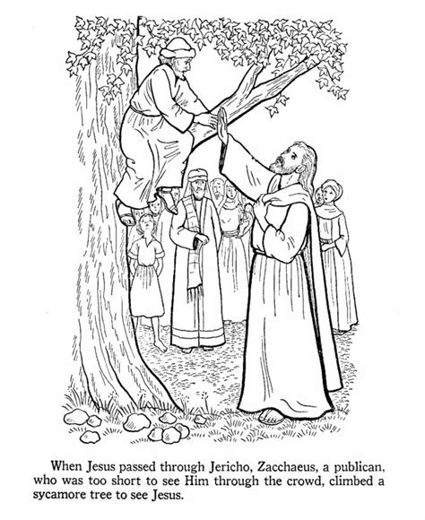 free printable coloring pages zacchaeus zacchaeus coloring page bible coloring pages