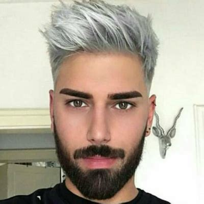 trend gray platinum hair men pictures grey hair dye for men black hairstle picture