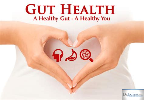 Living Detox For Your Gut by Is Your Gut Health Ruining Your
