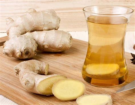 Minyak Jahe manfaat dan khasiat jahe untuk kesehatan bibitbunga