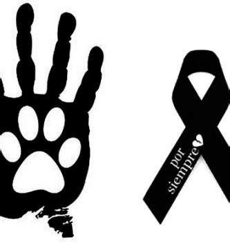 imagenes de luto canino imagenes de luto para gatos im 225 genes de luto